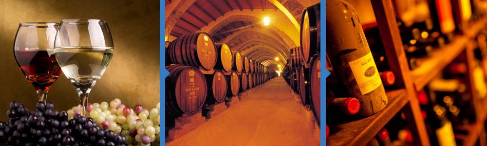 Tour degustazione vino